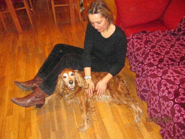 Reiki para Perros: La vivencia de Noa, mi amiga, mi compañera…