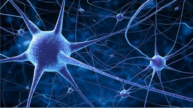Conciencia: ¿cómo nos influyen nuestras neuronas?