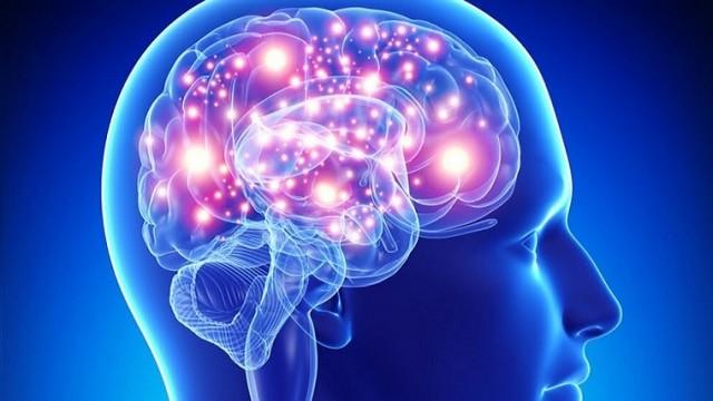 Conciencia en tu vida: ¿Qué es la Neuroplasticidad?