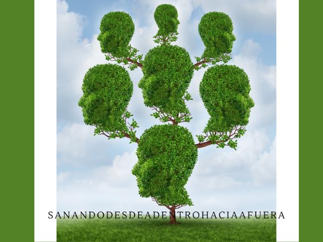 ¿Qué es el árbol transgeneracional?